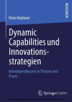 Dynamic Capabilities und Innovationsstrategien