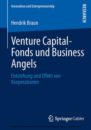 Venture Capital-Fonds und Business Angels