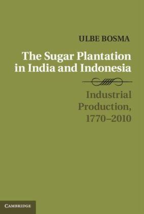 Sugar Plantation in India and Indonesia