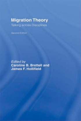 Migration Theory: Talking Across the Disciplines