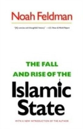 Fall and Rise of the Islamic State
