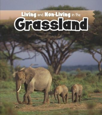 Living and Non-living in the Grasslands