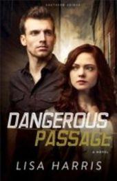 Dangerous Passage (Southern Crimes Book, No.1)