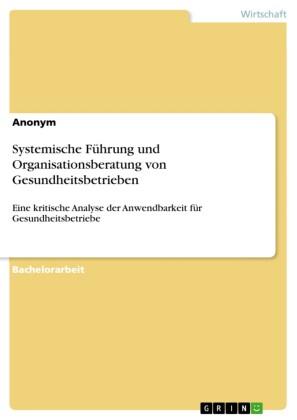 Systemische Führung und Organisationsberatung von Gesundheitsbetrieben
