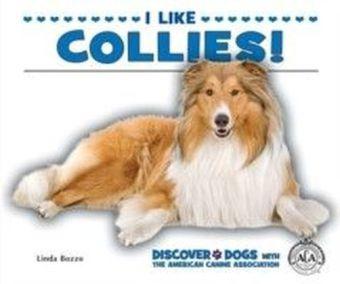I Like Collies!