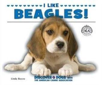 I Like Beagles!