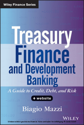 Treasury Finance and Development Banking + Website