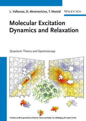 Molecular Excitation Dynamics and Relaxation