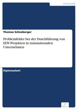 Problemfelder bei der Durchführung von EDV-Projekten in transnationalen Unternehmen