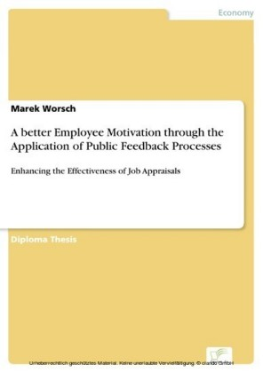 A better Employee Motivation through the Application of Public Feedback Processes
