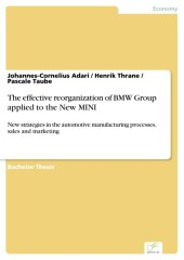 The effective reorganization of BMW Group applied to the New MINI