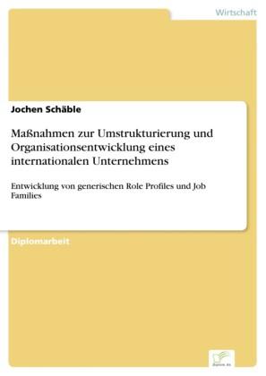 Maßnahmen zur Umstrukturierung und Organisationsentwicklung eines internationalen Unternehmens
