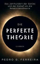 Die perfekte Theorie Cover