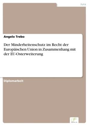 Der Minderheitenschutz im Recht der Europäischen Union in Zusammenhang mit der EU-Osterweiterung