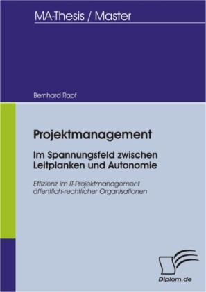 Projektmanagement - Im Spannungsfeld zwischen Leitplanken und Autonomie