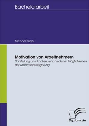 Motivation von Arbeitnehmern - Darstellung und Analyse verschiedener Möglichkeiten der Motivationssteigerung