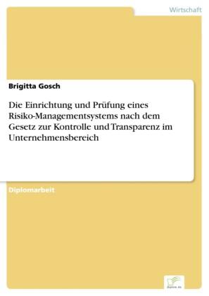 Die Einrichtung und Prüfung eines Risiko-Managementsystems nach dem Gesetz zur Kontrolle und Transparenz im Unternehmensbereich