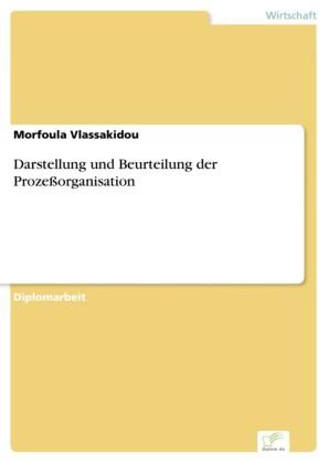 Darstellung und Beurteilung der Prozeßorganisation