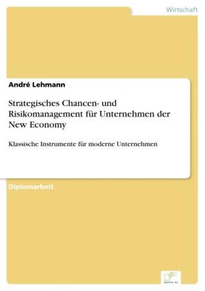 Strategisches Chancen- und Risikomanagement für Unternehmen der New Economy
