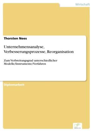 Unternehmensanalyse, Verbesserungsprozesse, Reorganisation