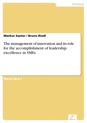 The management of innovation and its role for the accomplishment of leadership excellence in SMEs