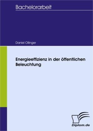 Energieeffizienz in der öffentlichen Beleuchtung