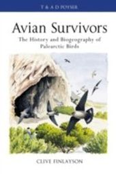Avian survivors