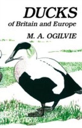 Ducks of Britain and Europe