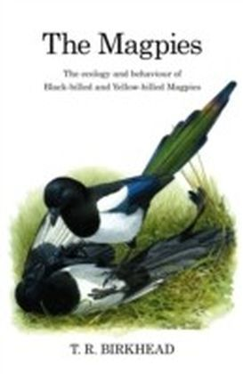 Magpies: The Ecology and Behaviour of Black-Billed and Yellow-Billed Magpies