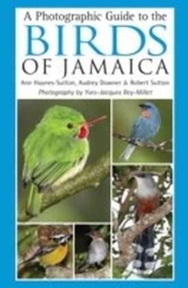 Photographic Guide to the Birds of Jamaica