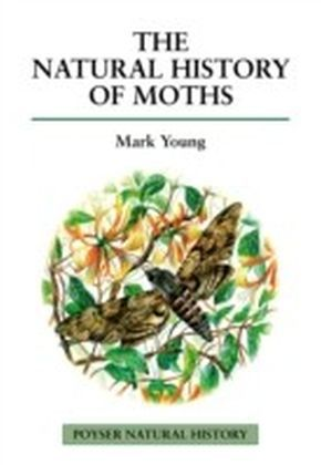 Natural History of Moths