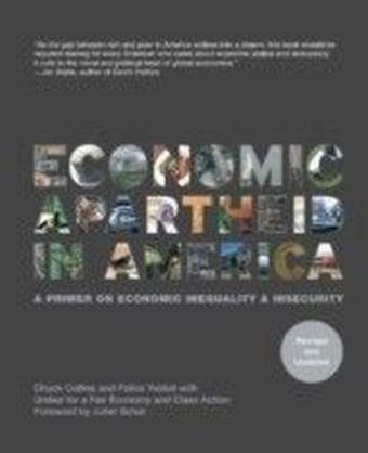 Economic Apartheid In America