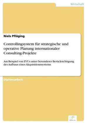 Controllingsystem für strategische und operative Planung internationaler Consulting-Projekte