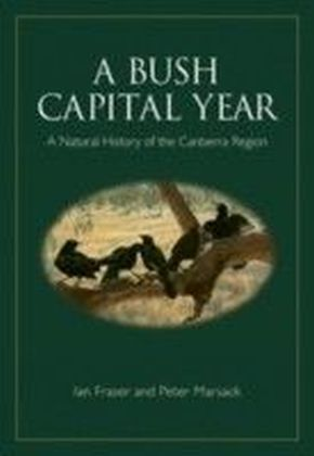 Bush Capital Year