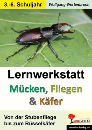 Lernwerkstatt Mücken, Fliegen und Käfer