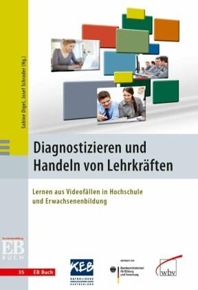 Diagnostizieren und Handeln von Lehrkräften