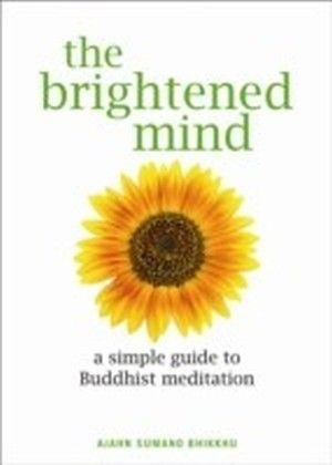 Brightened Mind