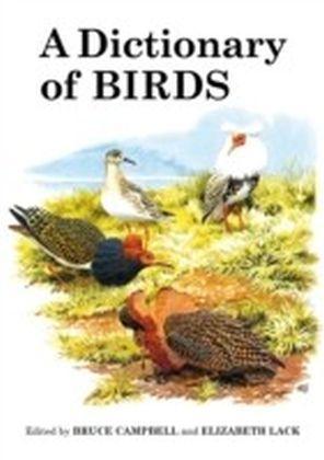 Dictionary of Birds