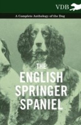 English Springer Spaniel - A Complete Anthology of the Dog