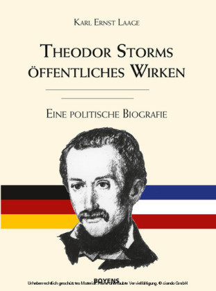 Theodor Storms öffentliches Wirken