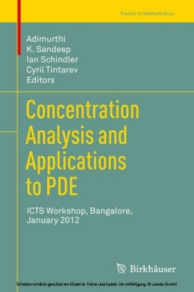 Concentration Analysis and Applications to PDE