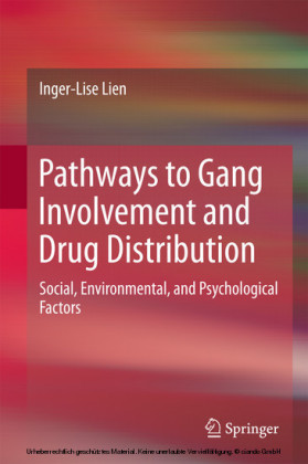 Pathways to Gang Involvement and Drug Distribution