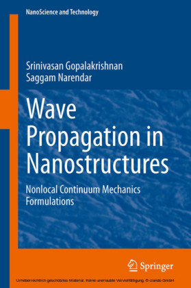 Wave Propagation in Nanostructures