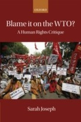 Blame it on the WTO?: A Human Rights Critique