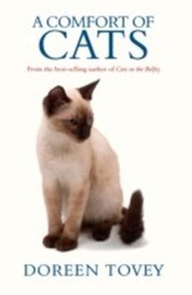 Comfort of Cats
