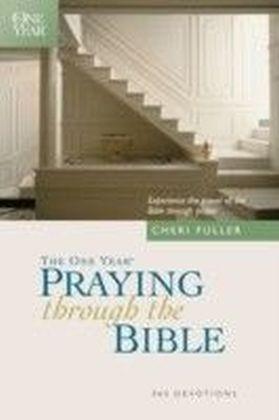 One Year Praying through the Bible