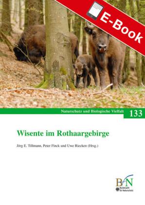 Wisente im Rothaargebirge