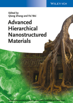 Advanced Hierarchical Nanostructured Materials