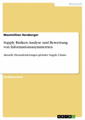 Supply Risiken: Analyse und Bewertung von Informationsasymmetrien