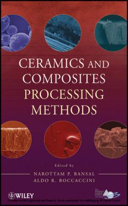 Ceramics and Composites Processing Methods